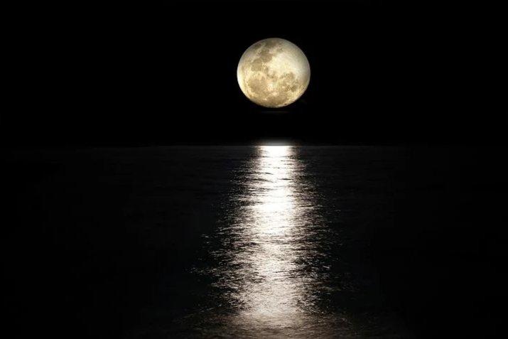 タチウオを釣りやすい時間帯は夜