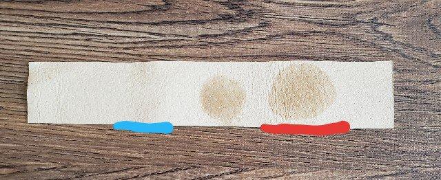 水とアイアクトでの保湿効果の違いを比較